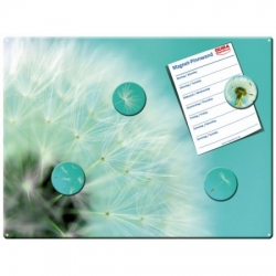 Magnetic pinboard Dandelion 60x40 cm incl. 6 magnets