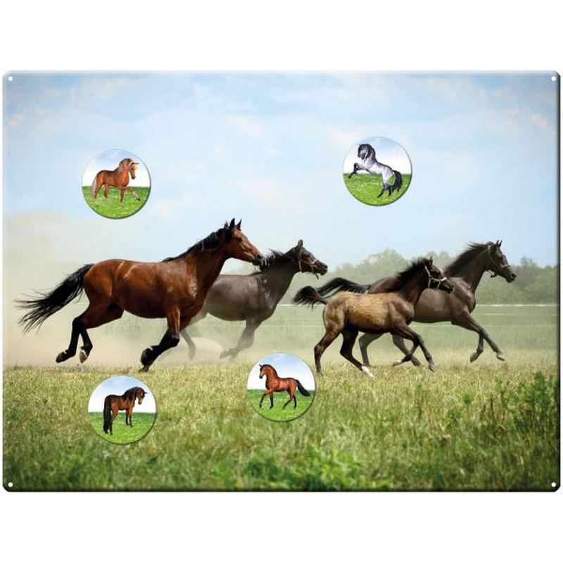 Magnetic pinboard Horses at a gallop 40x30 cm incl. 4 magnets