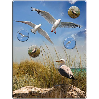 Magnetic pinboard Seagulls 40x30 cm incl. 4 magnets