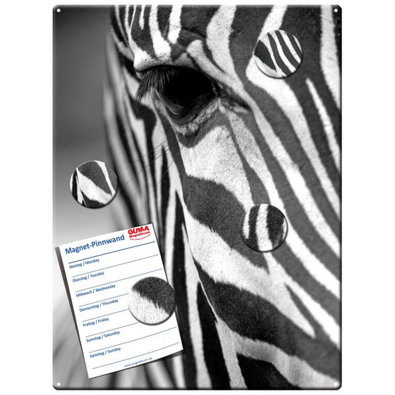 Magnetic pinboard Zebra 40x30 cm incl. 4 magnets