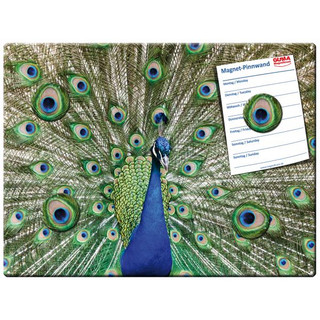 Magnetic pinboard Peafowl 40x30 cm incl. 4 magnets