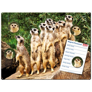 Magnetic pinboard Meerkats 40x30 cm incl. 4 magnets