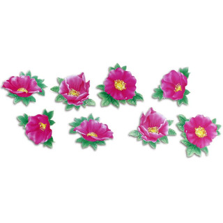 Pinboard Magnets Wild Roses Set with 8 pcs.