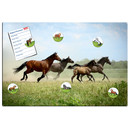 Magnetic pinboard Horses at a gallop 60x40 cm incl. 6...