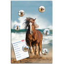 Magnetic pinboard Ocean Horse 60x40 cm incl. 6 magnets